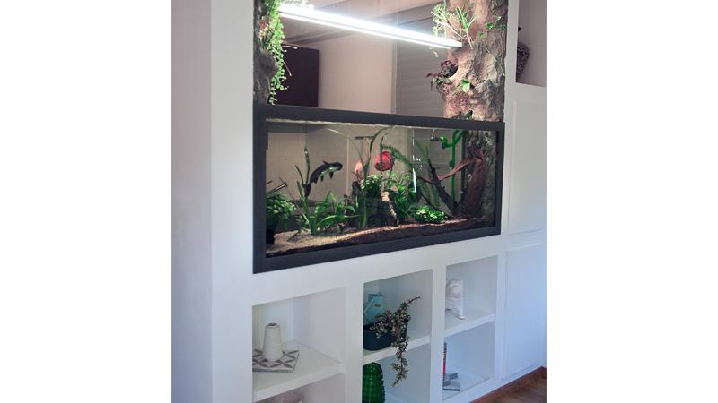 Construction exotique r alisations aquarium versoix for Mur vegetal aquarium