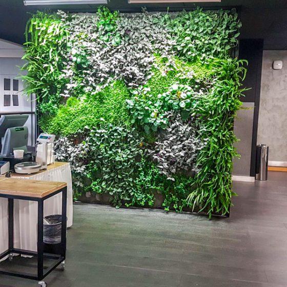 Mobilier et mur végétal