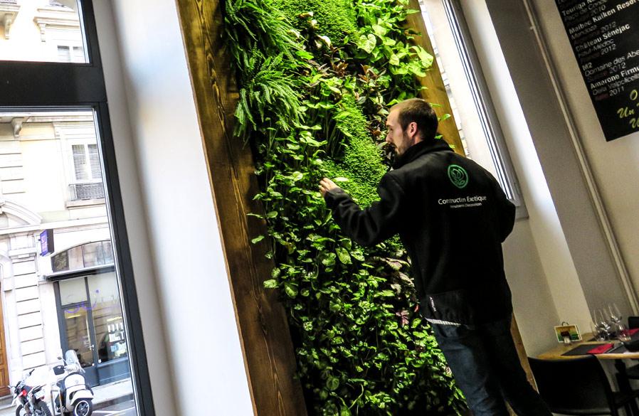 construction-exotique-menuiserie-mur-vegetal-versoix-geneve-lausanne-projet-tartaresandco-news-entretien-tartares-1