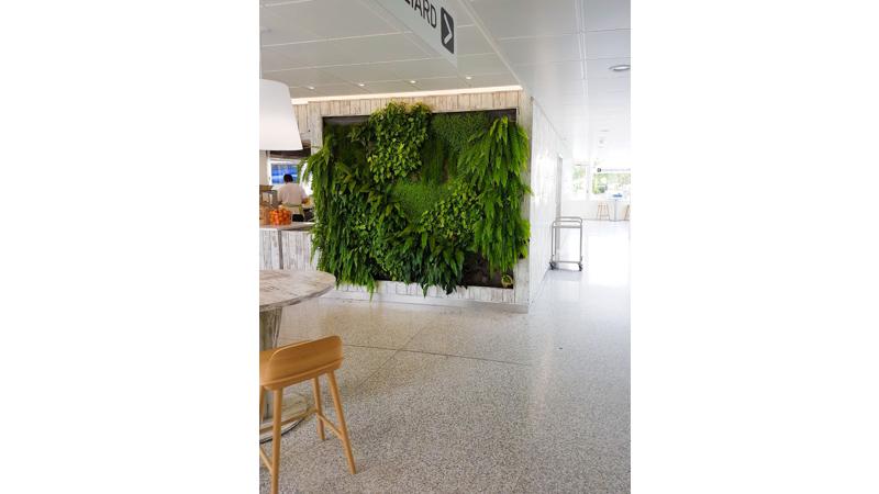 construction-exotique-menuiserie-geneve-lausanne-projet-Mur-vegetal-hopital-universitaire-geneve-HUG-restaurant-geneve-1